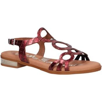 Schuhe Damen Sandalen / Sandaletten Oh My Sandals 4655-BR113 Rojo