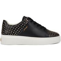 Schuhe Damen Sneaker Low Ed Hardy - Stud-ed low top black/gold Schwarz