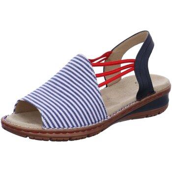 Schuhe Damen Sandalen / Sandaletten Ara Sandaletten Hawaii 12-27241-79 blau