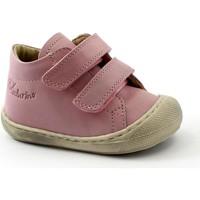 Schuhe Mädchen Babyschuhe Naturino NAT-CCC-12904-16 Rosa