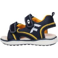 Schuhe Jungen Sandalen / Sandaletten Falcotto - Sandalo blu/giallo ATALYN-1C67 BLU
