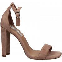 Schuhe Damen Sandalen / Sandaletten Steve Madden FRANKY SUEDE mauve
