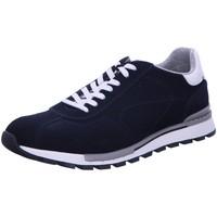 Schuhe Herren Derby-Schuhe & Richelieu Digel Schnuerschuhe Halbschuh Sportboden Blau Scary Neu 1109751-20 blau