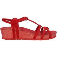 Schuhe Damen Sandalen / Sandaletten Panama Jack Charo Basics B1 Rojo