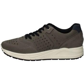 Schuhe Herren Sneaker Low Imac 503020 GRAY