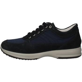 Schuhe Herren Sneaker Low Imac 501601 BLUE