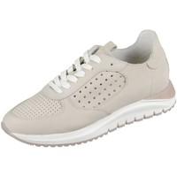 Schuhe Damen Sneaker Low Bullboxer Schnuerschuhe 550002E5L_SANDTD70 beige