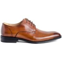 Schuhe Herren Derby-Schuhe Hobb's MA301113-02 Braun