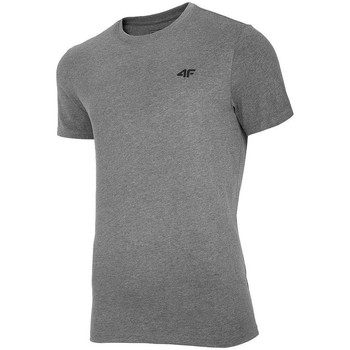 Kleidung Herren T-Shirts 4F TSM003 Grau