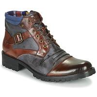 Schuhe Herren Boots Kdopa SLASH Camel / Blau