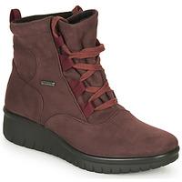 Schuhe Damen Boots Romika Westland CALAIS 08 Bordeaux