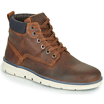 Schuhe Jungen Boots Jack & Jones JR TUBAR LEATHER Braun