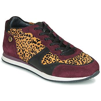 Schuhe Damen Sneaker Low Pataugas IDOL/I F4E Bordeaux / Leopard