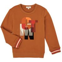 Kleidung Jungen Sweatshirts Catimini CR15024-63-C Braun