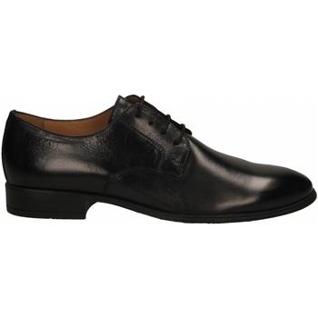 Schuhe Herren Derby-Schuhe Antica Cuoieria SIRIANA nero