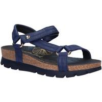 Schuhe Damen Sandalen / Sandaletten Panama Jack Sandra Nacar B3 Azul