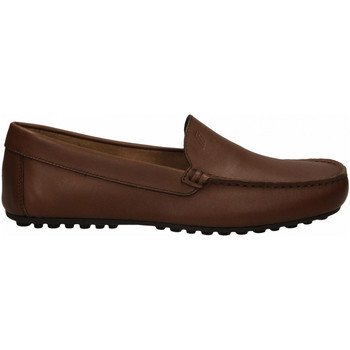 Schuhe Herren Slipper Frau SPINNER brown