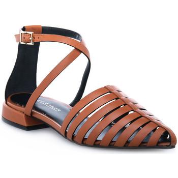Schuhe Damen Sandalen / Sandaletten Elvio Zanon PARMA CUOIO Marrone