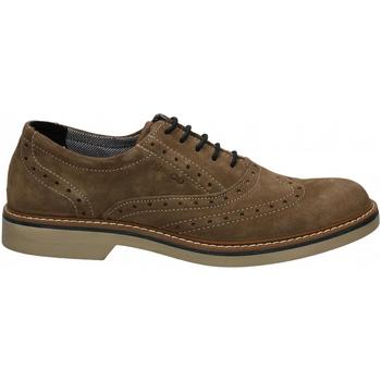 Schuhe Herren Derby-Schuhe IgI&CO UFP 51050 fango