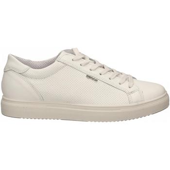 Schuhe Herren Sneaker Low IgI&CO USH 51387 bianco