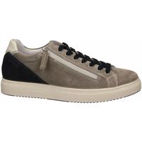 Schuhe Herren Sneaker Low IgI&CO USH 51389 grigio