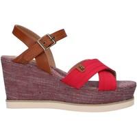Schuhe Damen Sandalen / Sandaletten Refresh 69908 Rojo