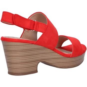 Xti 49996 Rojo - Schuhe Sandalen / Sandaletten Damen 4099