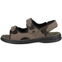 Schuhe Herren Sandalen / Sandaletten Josef Seibel Franklin Braun