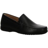 Schuhe Herren Slipper Sioux Slipper Giumelo 36260 schwarz