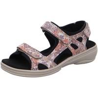 Schuhe Damen Sandalen / Sandaletten Fidelio Sandaletten 44500793 beige