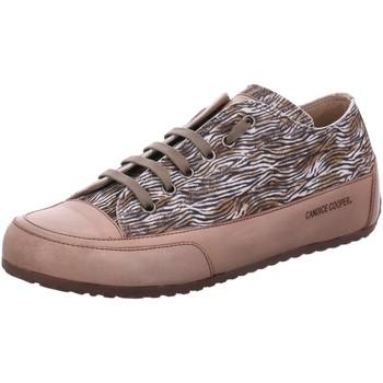 Schuhe Damen Sneaker Low Candice Cooper Schnuerschuhe Rock D4041 beige