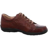 Schuhe Herren Sneaker Low Finn Comfort Schnuerschuhe 01288 900787 braun
