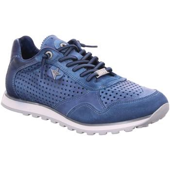 Schuhe Herren Derby-Schuhe & Richelieu Cetti Schnuerschuhe blau