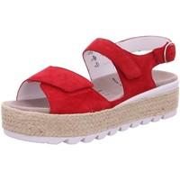 Schuhe Damen Sandalen / Sandaletten Semler Sandaletten SAMT-CHEVRO F6015042/066 rot