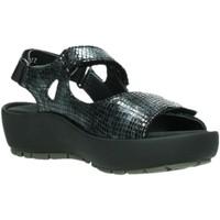 Schuhe Damen Sandalen / Sandaletten Wolky Sandaletten RIO RETRO LEATHER 0332598-000 schwarz