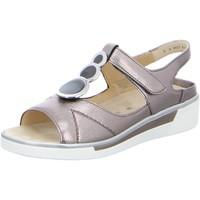 Schuhe Damen Sandalen / Sandaletten Ara Sandaletten 12-17439-75 grau