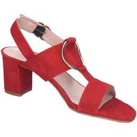 Schuhe Damen Sandalen / Sandaletten Brenda Zaro Sandaletten Poler New Tristan Suede T3586A POLER NEW TRISTAN rot
