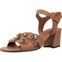 Schuhe Damen Sandalen / Sandaletten Bruno Premi BZ3601X Brown