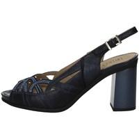 Schuhe Damen Sandalen / Sandaletten Pitillos 6161 BLUE