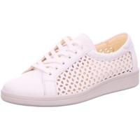Schuhe Damen Derby-Schuhe & Richelieu Christian Dietz Schnuerschuhe Vicenza 22524051-52 weiß
