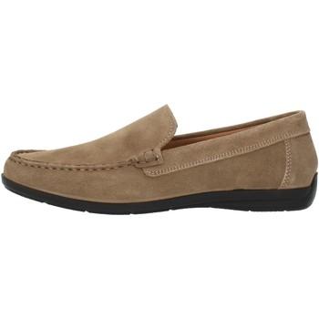 Schuhe Herren Slipper Imac 500711 beige