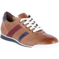 Schuhe Herren Sneaker Low Lloyd Schnuerschuhe ALAIN 1001111 braun