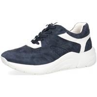 Schuhe Damen Derby-Schuhe & Richelieu Caprice Sneaker 23501 ozean
