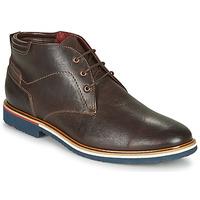 Schuhe Herren Boots Lloyd  Braun