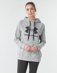 Kleidung Damen Sweatshirts Under Armour RIVAL FLEECE LOGO Grau