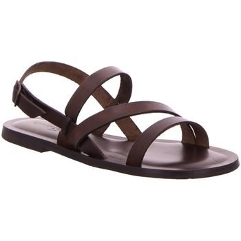 Schuhe Damen Sandalen / Sandaletten Nuovo Nicar Sandaletten W0279 braun