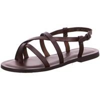 Schuhe Damen Sandalen / Sandaletten Nuovo Nicar Sandaletten W 6101 braun