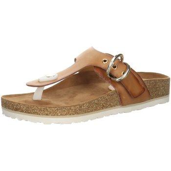 Schuhe Damen Pantoletten / Clogs Salamander Pantoletten Maruni Pantolette 32-73103-04 braun