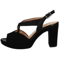Schuhe Damen Sandalen / Sandaletten Soffice Sogno E20323 BLACK