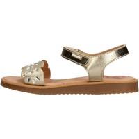 Schuhe Jungen Wassersportschuhe Pablosky - Sandalo beige 486980 BEIGE